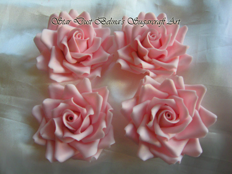$XL light pink roses flowers