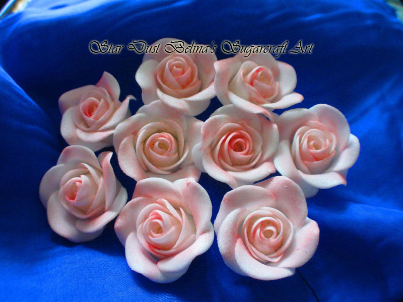 White roses airbrushed with pink