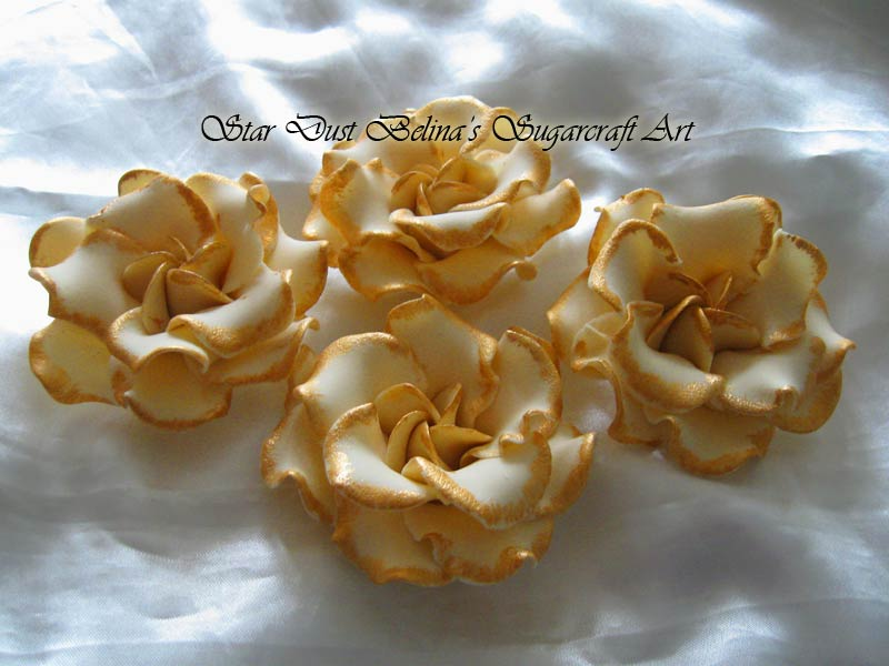 Large Gardenia roses ivory with gold colour