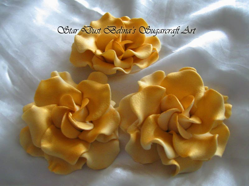 Large Gardenia roses gold colour