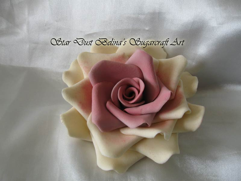 Three  XL  Ivory/Dusky pink roses  sugar flowers