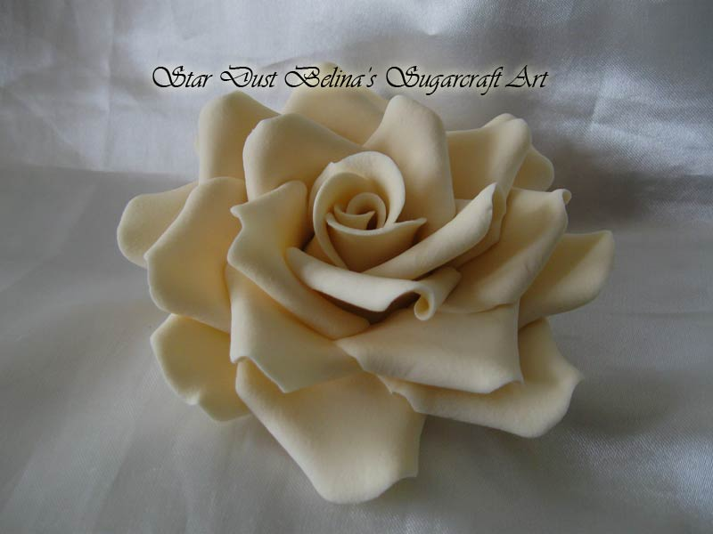 Three  XL  Ivory  roses  sugar flowers