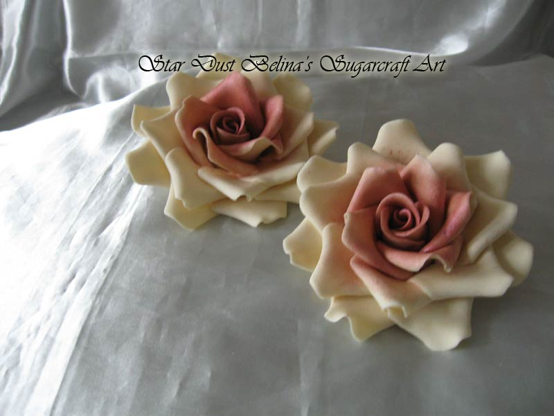 Three  XL  Ivory / claret wine  roses  sugar flowers