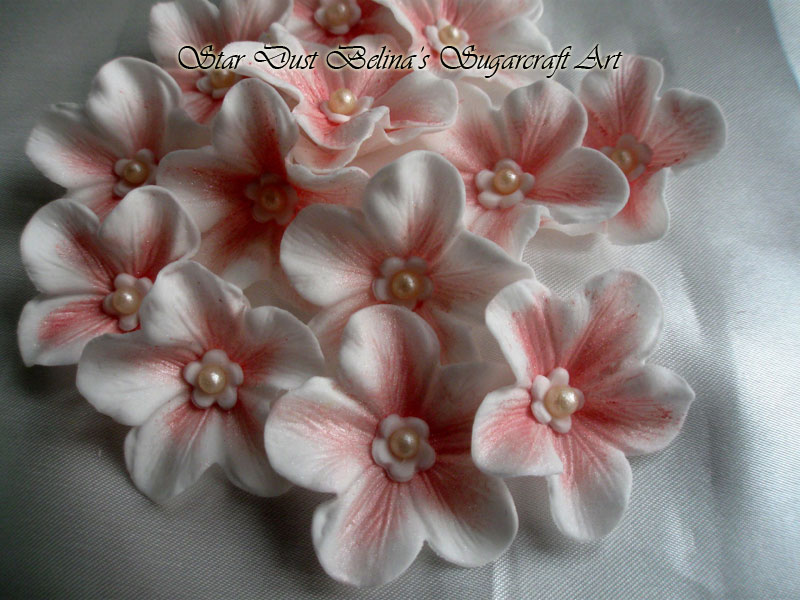 $White & pink sugar blossoms